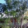 Yallingup Forest Resort