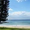 Seabreeze Beach Hotel - SW Rocks NSW