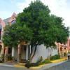 The Manora Apartments