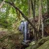 Waterfall Springs Retreat and Wildlife Sanctuary