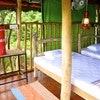 Elephant Watch Hut