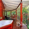 Wollumbin Palms Rainforest Retreat