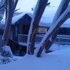 Attunga Alpine Lodge and Apartments