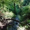 The Lodge Mapleton Falls