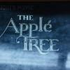Apple Tree Backpackers