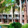 Margarets Forest Holiday Apartments
