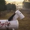 Myella Farm Stay