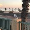 Shark Bay Seafront Apartments
