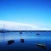 Odyssey Apollo Bay