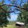 Dunoon Farmhouse