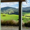 Catlins Mohua Park and Catlins Scenic & Wildlife Tours