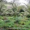 Te PoPo Gardens & Accommodation