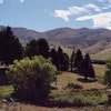 Alpine Views Burkes Pass
