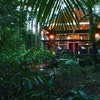 Early Bird Special(Rainforest Villa)