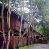 Village Home - A3