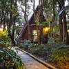 Rainforest Spa Chalet - 1 night only