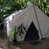 Nemo Jungle Tent