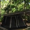 Anemone Jungle Tent