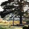 Vineyard Estate - Exclusive