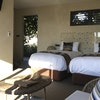 Spinifex Suite