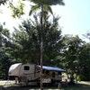 Powered Campsite