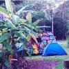 Unpowered Campsite