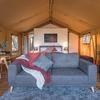 Safari Tent Standard Rate
