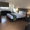 Premier Queen Room Standard rate