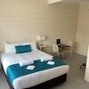 Queen Bed Pet Friendly Room Standard