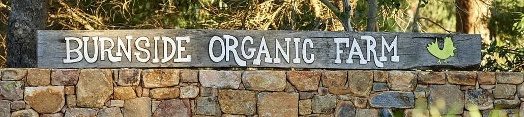 67 20171122 burnside organic farm avocados  jema in the garden   new signage