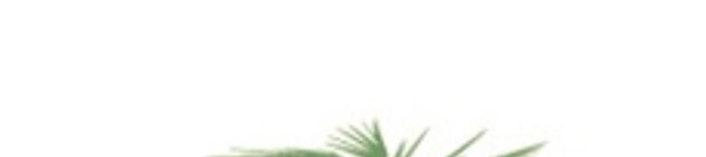 Small logo ooo