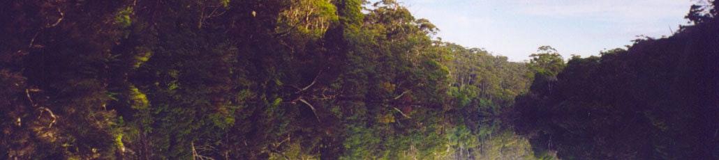 Sunset holiday villas arthur river
